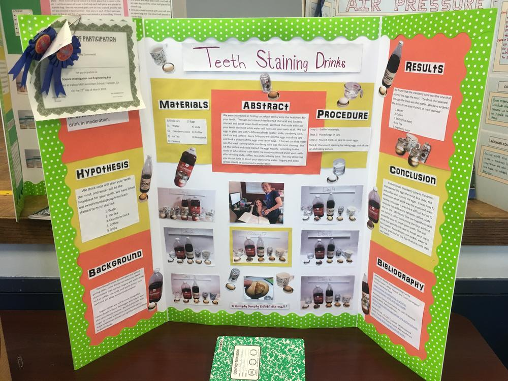 Display from Vallejo Mill Science Fair