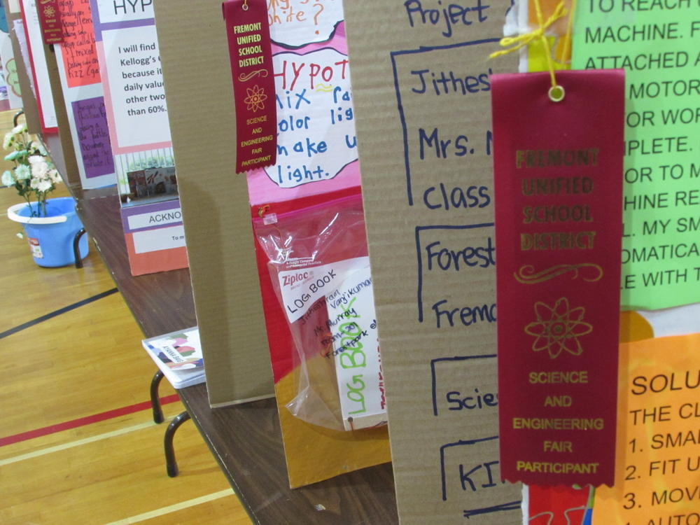 Displays from FUSD Science   Engineering Fair.